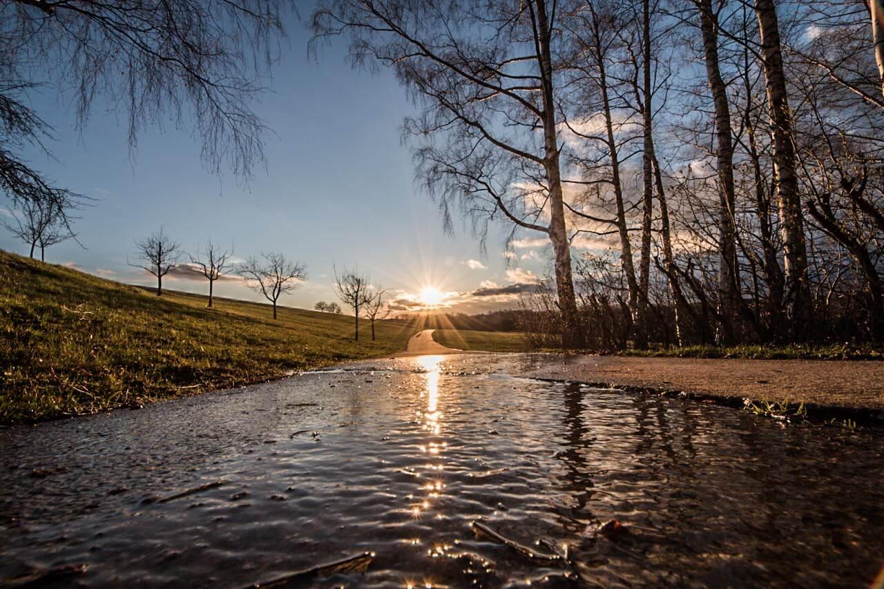 April Wetter
