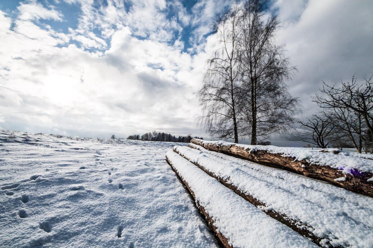 winterwetter 2019