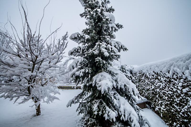 Wetter München Weihnachten 2019.Wetter Januar 2019 Wetterprognose Und Wettervorhersage