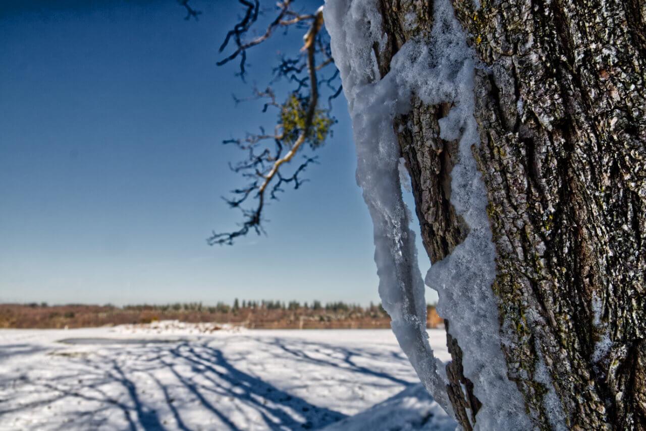 Wettervorhersage Für Weihnachten 2019.Wetter Winter 2018 2019 Aktuelle Wetterprognose Vom 13 12 2018